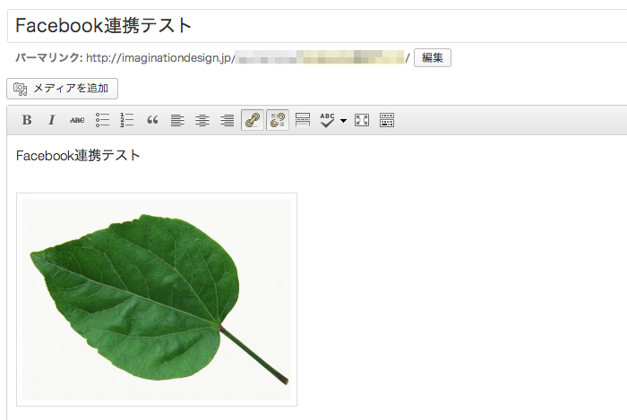 Wordbooker でカスタム投稿タイプの記事もFacebookに連携する方法他、2013年4月時点のWordbooker 設定方法のまとめ